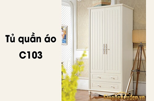 Tu-quan-ao-2-canh-C103 (1)